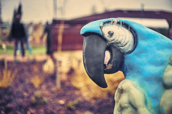 adventure golf parrot